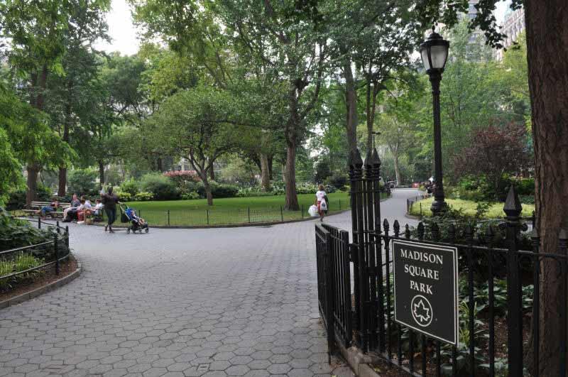 neighborhood Madison Square